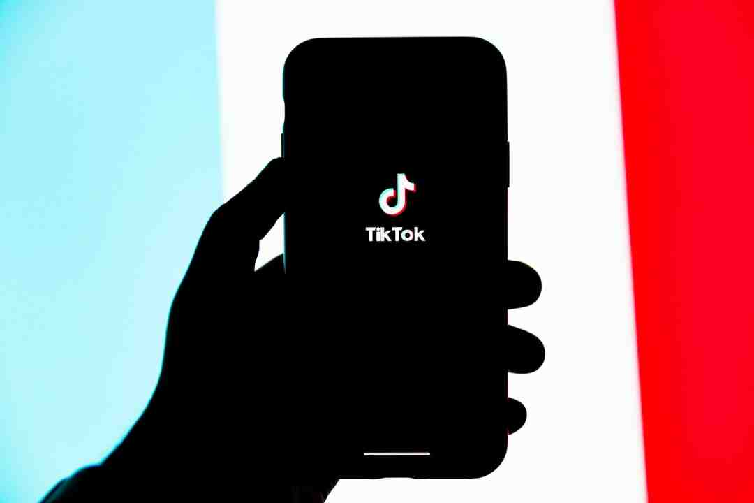 Comment regarder TikTok sans installer ?
